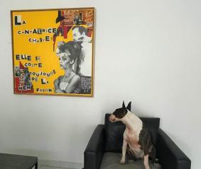 Céline Sassatelli chez Barbara